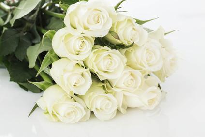 11 white roses kazakhstan florist kazakhstan flower delivery mightylinksfo